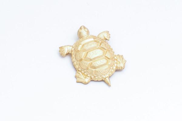 broche-tortuga-grande