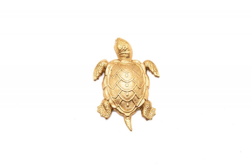 broche tortuga mini