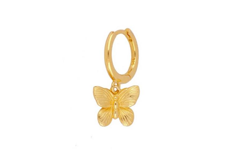 argollita mariposa