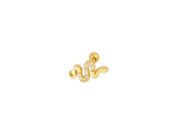 Pendiente Serpiente Rosca