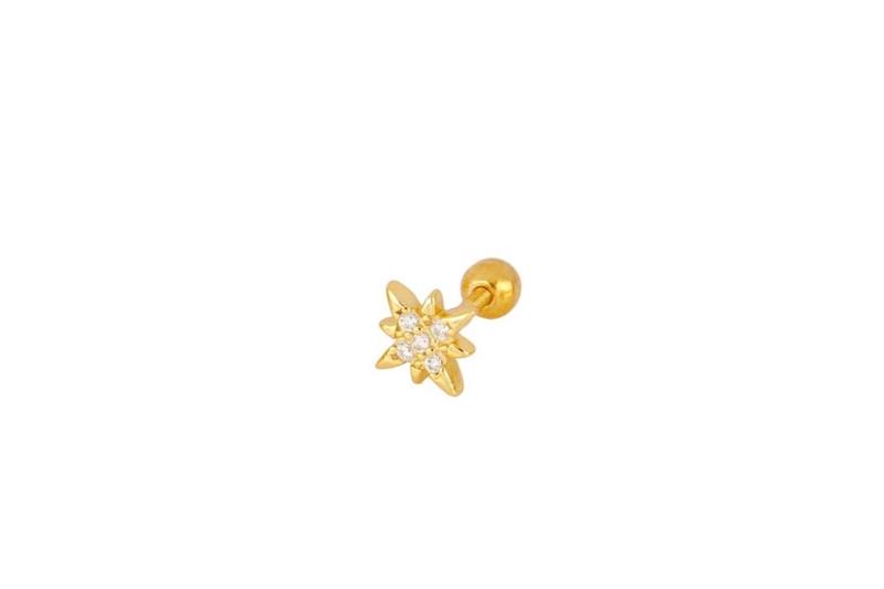 Pendiente Estrella Polar Rosca