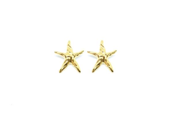 Pendientes Estrella de Mar en latón